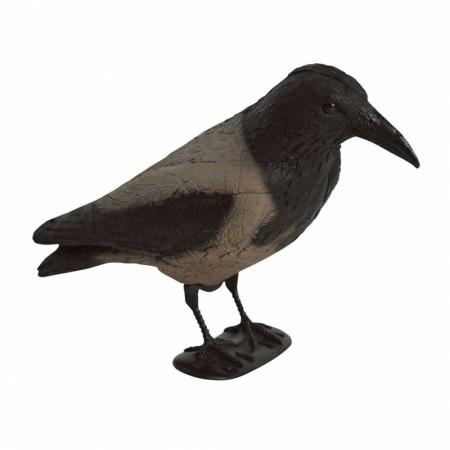 Lokkefugl